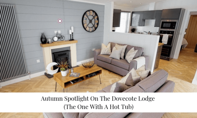 Autumn Spotlight On The Dovecote Lodge (The One With A Hot Tub)